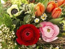 Vragen over 'foute' ondernemers: Mag een fietsenzaak bloemen verkopen?