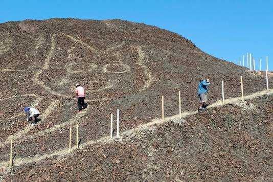 De tekening van de kat was volledig verdwenen in het heuveltje en werd bij toeval ontdekt en vervolgens blootgelegd door archeologen.