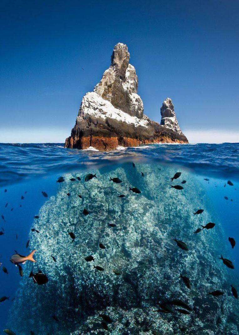 Een rotsblok in de Stille Oceaan. Beeld EPA