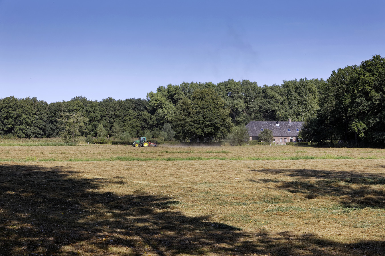De Savendonksestraat in Liempde, de plek waar het nieuwe oerbos moet komen.