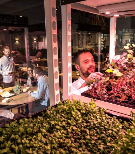 Restaurant Emma in Eindhoven op de fles met enorme schuld
