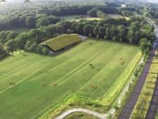 Groen licht voor bouw stadsboerderij Emmen: mét melkkoeien en een verswinkel