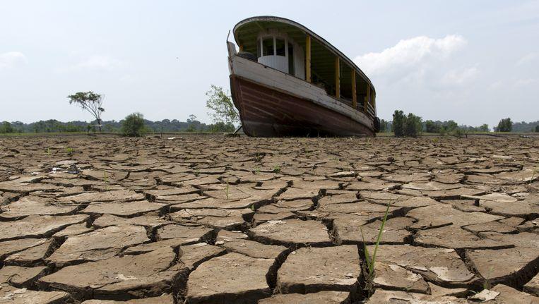 Brazilië gaat gebukt onder de ergste droogte in tien jaar tijd. Beeld REUTERS