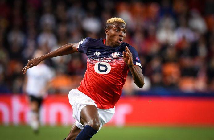 Un an après avoir quitté Charleroi, Victor Osimhen a déjà mis la Ligue 1 à ses pieds.