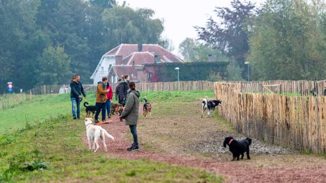 Nieuwe hondenlosloopzone heeft aparte zone voor kleine hondjes