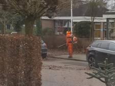 Toegewijde bladblazer trotseert de storm in Utrechtse Heuvelrug
