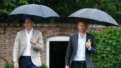 Een subtiele verwijzing naar broer William? Prins Harry benadrukt belang van genegenheid tijdens coronacrisis