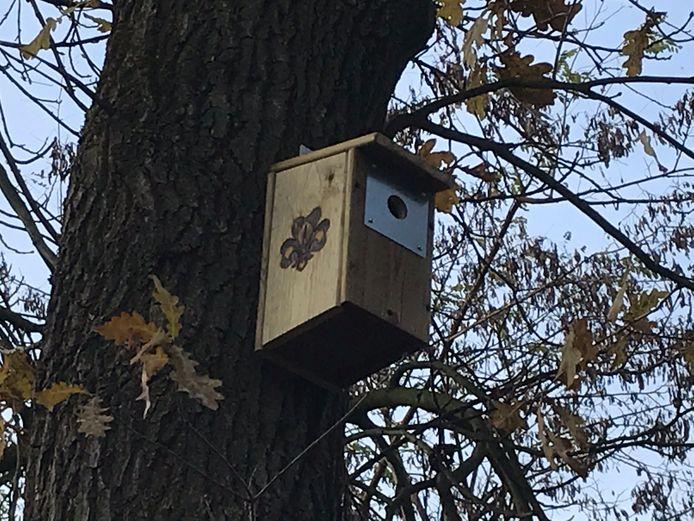 Op verschillende plaatsen in Nederland hangen al grote hoeveelheden nestkasten om meer vogels aan te trekken, die eikenprocessierupsen eten.