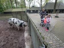 Wie wil een kiosk bij kinderboerderij in Veldhoven?