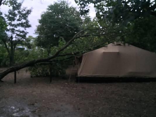 Op de camping van Rilana Altena viel een boom op een tent. 'Gelukkig liep het goed af en raakte niemand gewond'.