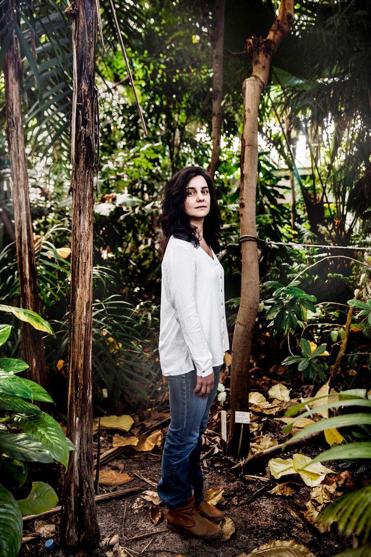 Wetenschapper Sylvia Mota de Oliveira: 'De klim naar de top was spectaculair, surrealistisch. Alleen maar groen, zover het oog reikt.' Beeld Aurélie Geurts