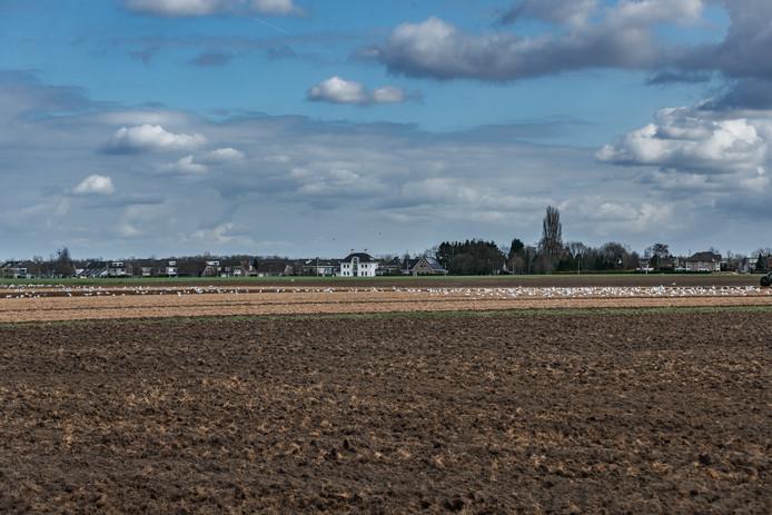 De Bulkenaar, ten zuid-westen van Roosendaal is de beoogde plek voor de nieuwbouw van het Bravis ziekenhuis. Waar precies, is nog niet bekend. Bewoners hopen zo ver mogelijk van de huizen vandaan.