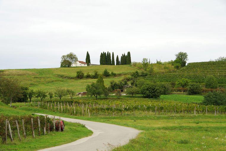 De tuin van Oostenrijk, zo werd deze vallei genoemd toen die nog deel uitmaakte van het Habsburgse rijk. Beeld Esther te Lindert