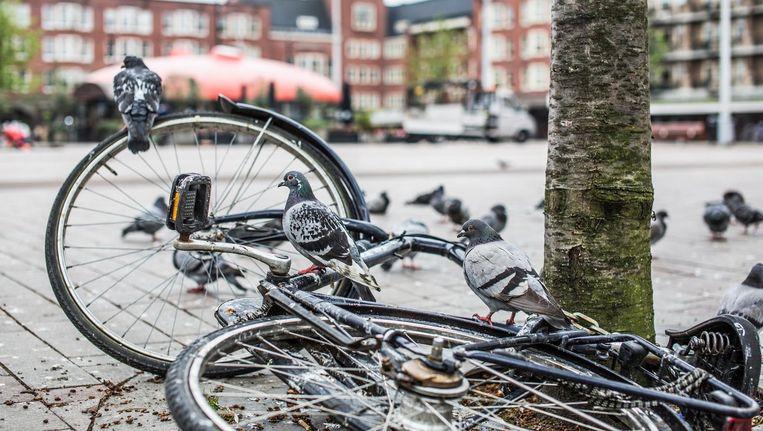 Stof je fiets maar af in de Mercatorbuurt: 30 april moet de ronde gereden worden. Beeld Eva Plevier