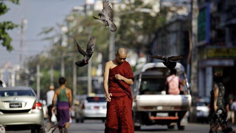 Een boeddhistische monnik in de hoofdstad Rangoon Beeld epa