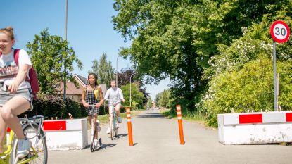 Beruchte knip in Bosstraat verdwijnt: gemeente heeft nieuw ontwerp klaar