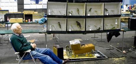 Vogels in beslag genomen op Zwolse vogelmarkt