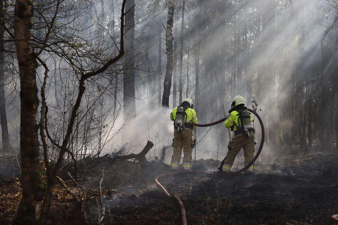In het bos bij de Sportlaan in Boxmeer is ongeveer 20 bij 30 meter bos afgebrand. Vermoedelijk is de brand aangestoken.