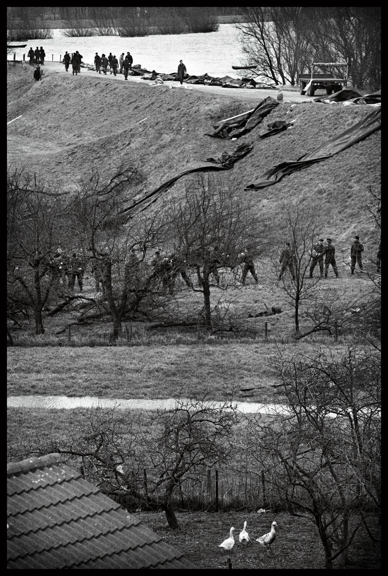 De dijk bij Ochten wordt versterkt met zandzakken, februari 1995.  Beeld Marcel van den Bergh / de Volkskrant