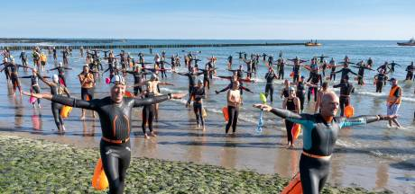 Maximale aantal van 250 zwemmers trekt woensdag langs Walcherse kust