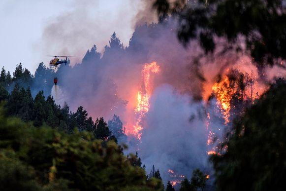 Een helikopter loost water boven het door vuur bedreigde bos in Gran Canaria.
