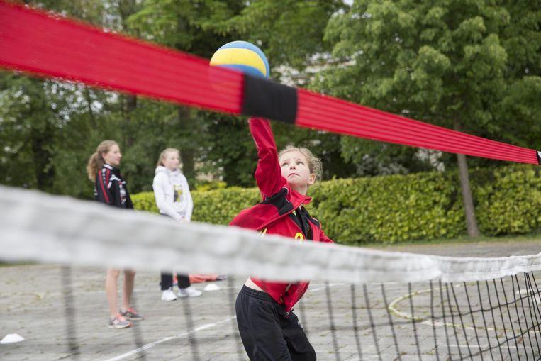 VC Zoersel geeft in augustus en september initiatielessen volleybal voor G-sporters.