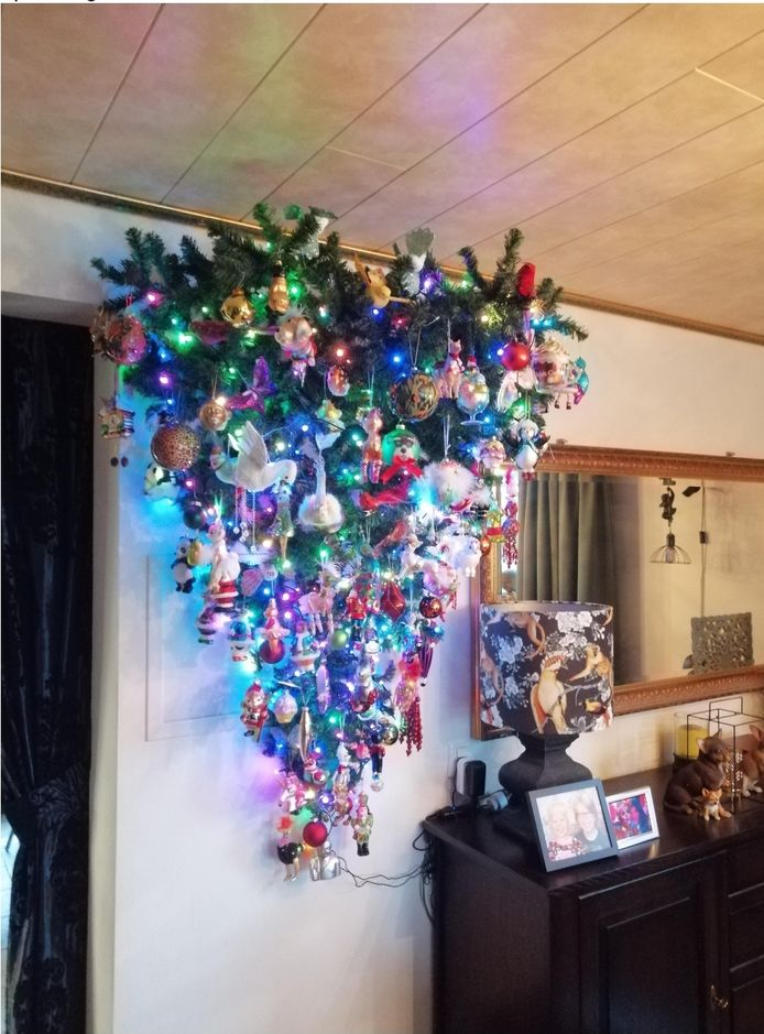 Kees en Miriam Theunissen: 'Wij hebben de boom gister gezet, wij zetten deze niet, maar hangen deze. Een mooie oplossing voor mensen met kat of hond, of met kleine kinderen. Of wanneer er minder ruimte is.'