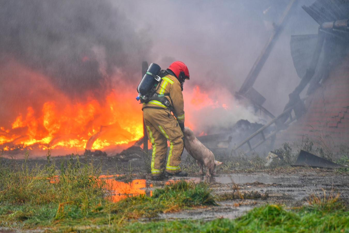 Brandweer aanwezig bij stalbrand in Heusden