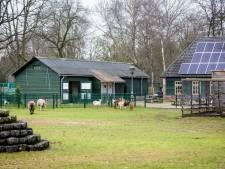 Kinderboerderij in Valkenswaard zoekt naarstig naar geld