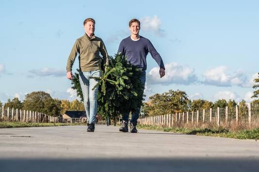 Julian Macleane en Bart Mathijssen gaan online kerstbomen verkopen en bezorgen in de Betuwe, Arnhem en Nijmegen.