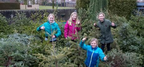 Teleurstelling voor de Veenendaalse jeugd: geen kerstboominzameling, geen extra zakcentje