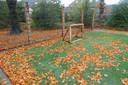 Pannaveldje met houten goaltjes.