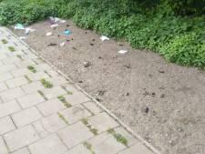 Hups weg in Enschede, maar de hondenpoep nog niet