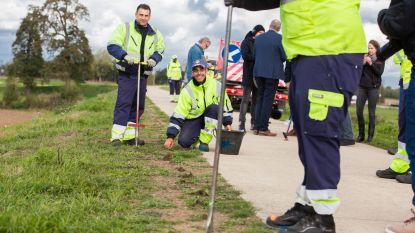 36.000 krokussen waar 'dodendraad' stond langs Maasdijk