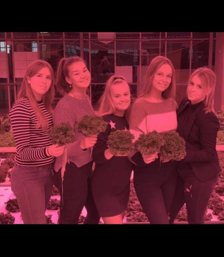 Helmondse leerlingen tijdens Dutch Design Week: 'Even wennen aan drinkbare sla'