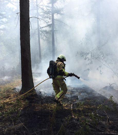 Kleine bosbrand in buitengebied Enschede