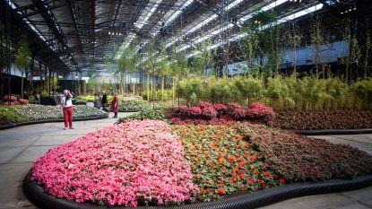 Floraliën schuiven exact één jaar op: van 1 tot 9 mei 2021