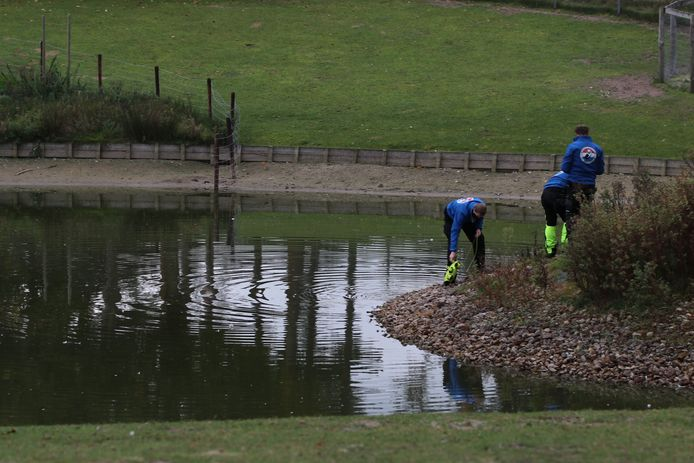 Een gespecialiseerd team zoekt naar Rosa in het water op het terrein van haar zorginstelling 'S-Heeren Loo in Ede.