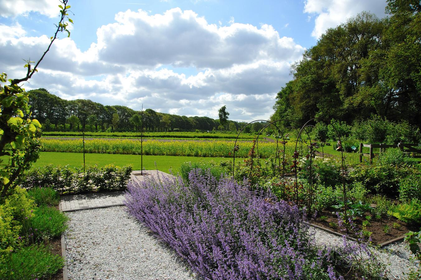 In de eigen A. Vogel Tuinen in 't Harde kweekt Biohorma de kruiden die voor de middelen worden gebruikt. De ecologische kwekerij heeft een oppervlakte van 14 hectare.