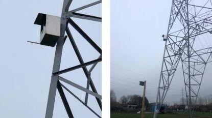 Netbeheerder Elia hangt nestkast voor torenvalken