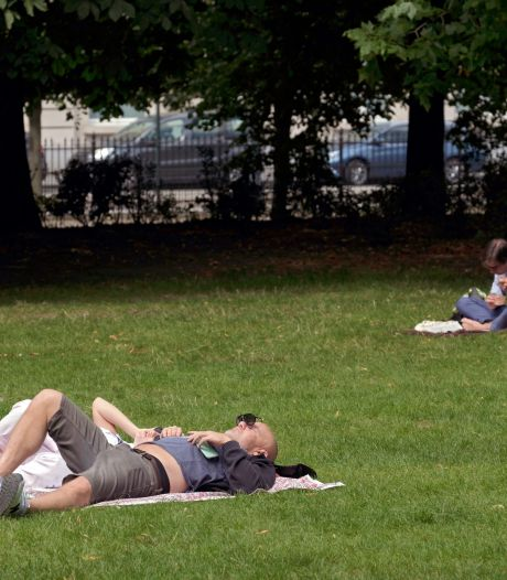 Place à la chaleur pour la dernière semaine de juillet: jusqu'à 30 degrés nous attendent