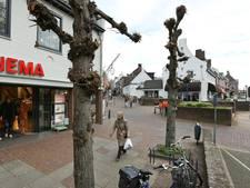Zes zebrapaden in binnenstad Rhenen