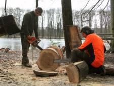 Feestelijke opening nieuwe speelplaatsen in Haagse Bos