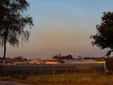 Sint Anthonis en Reusel-De Mierden: 'Ongeveer helft veehouders stopt binnenkort'