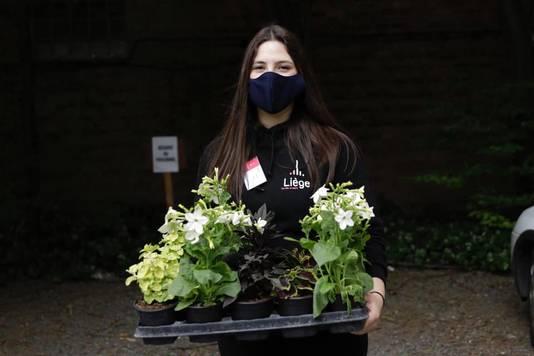 """Les agents de quartiers volontaires distribueront les fleurs initialement destinées à """"Bueren en Fleurs 2020"""""""