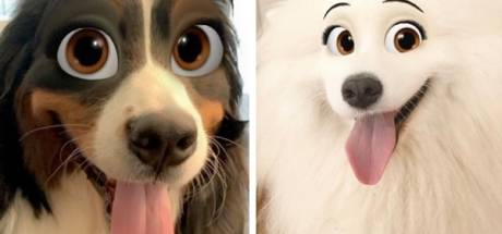 Ce filtre Snapchat transforme votre chien en personnage Disney