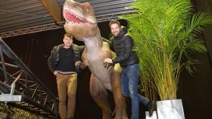 Van dinosauriërs in Ninove tot Q-party in Oktoberhallen: hier kan je het nieuwe jaar feestend inzetten