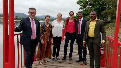 """Brugge gaat partnerschap aan met Kameroense stad Ebolowa: """"We gaan er de cacaoboeren steunen"""""""