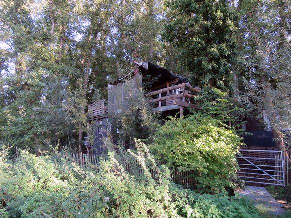 De illegale boomhutten in het natuurreservaat Molenbeekvallei in Erps-Kwerps werden inmiddels afgebroken.