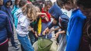 Gent is een goede leerling op vlak van waterkwaliteit, maar het kan nog beter